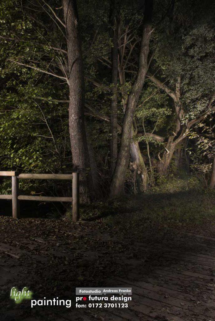 chemnitzer-stadtpark-foto-lightpainting